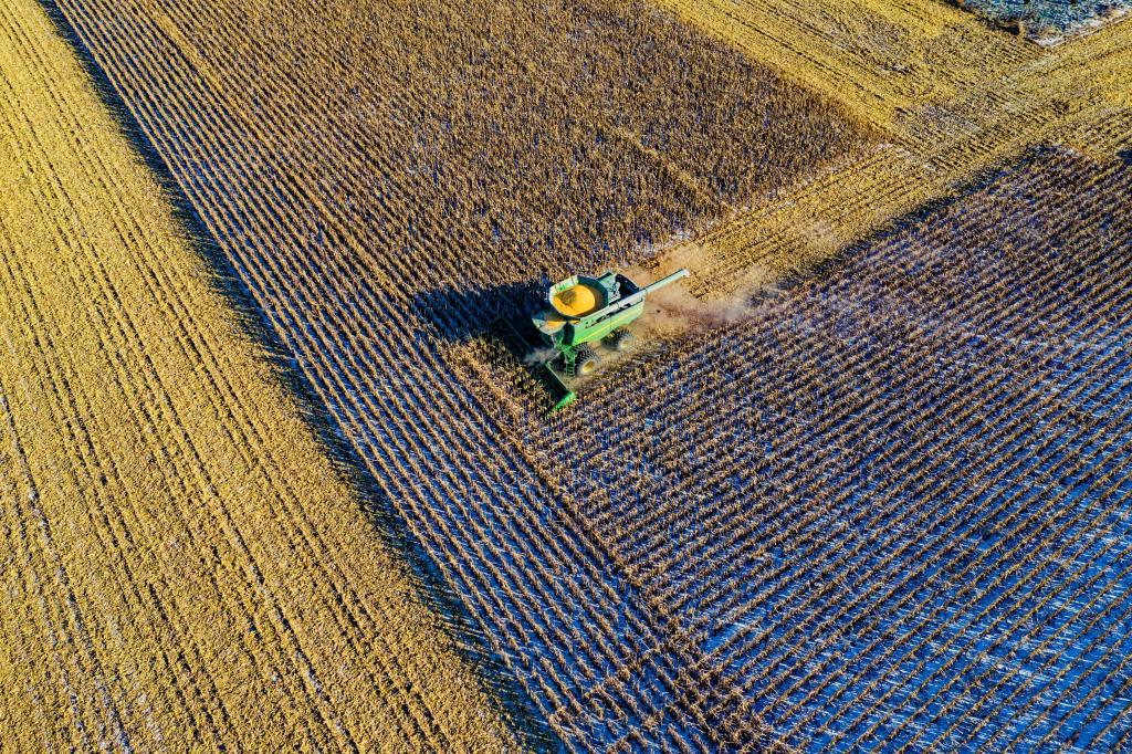 Monoculture - Une brève histoire de pesticide