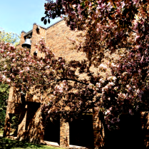 Bethel Seminary