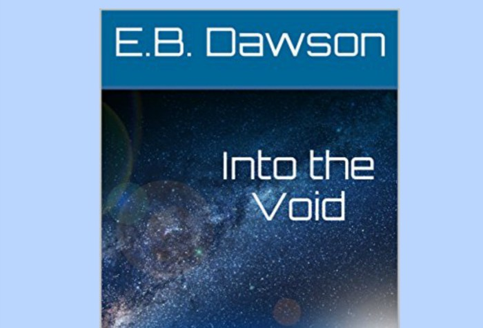 Hannah's Novel Notions: A Review of Into the Void by E.B. Dawson