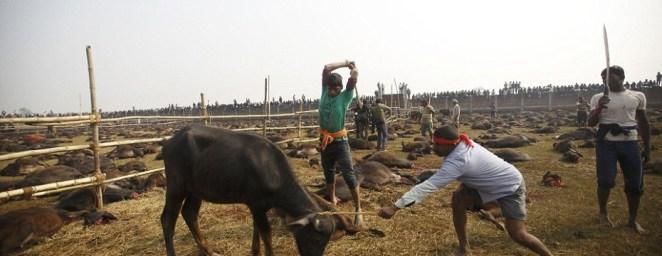 Massacre in Nepal