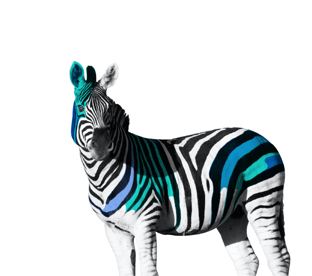A zebra in colors of construct with a C in the background