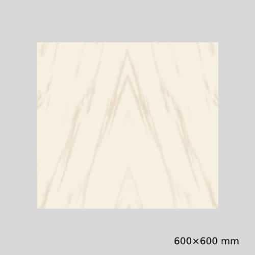 Gujarath Floor Tiles