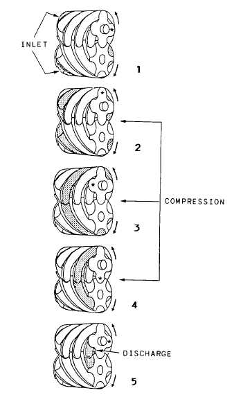 Screw Type of Compressor
