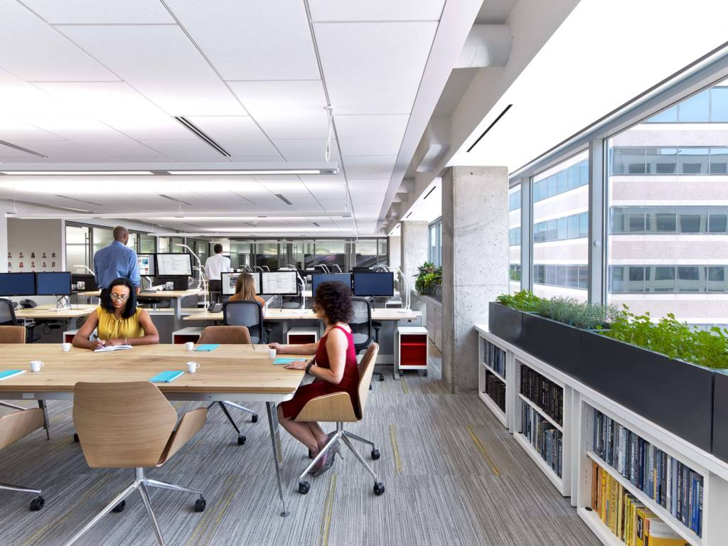 Sustainability And Wellness In Dc Interior Design Office