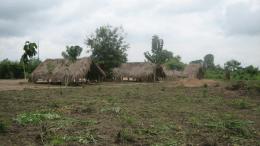 terrain défriché au Togo