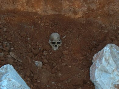 Esqueleto de Ciencias Naturales