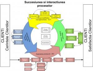 ISO 9001 Succesiunea si interactiunea proceselor