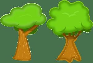 tree-146748_640