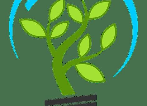 Certification écoresponsable: mode d'emploi