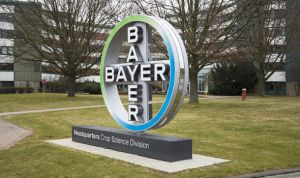 Bayer AG, Niederlassung Momheim am Rhein