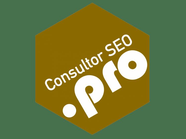 Logo Consultor SEO