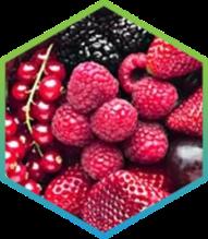 Organic Mediterranean berries, fruits, and vegetable blend