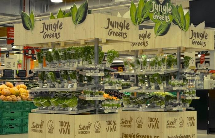 Jumbo alarga horta de aromáticas a mais lojas