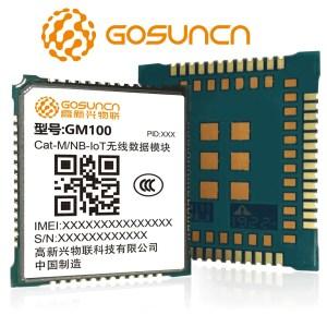Modulo GM100