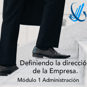 Definiendo el negocio y la dirección de la empresa