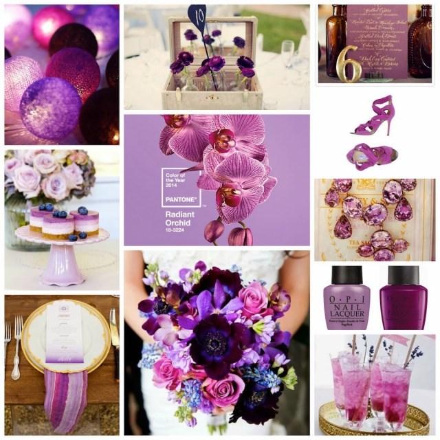 Color del año. Orquíde Radiante