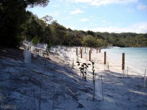 Lake McKenzie (Boorangoora) Beach on 25 June 2011 taken just below Boorangoora 1 with the same focal point