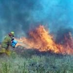 """""""La Niña"""" influiría en incendios forestales de esta temporada en México"""