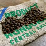 Honduras exporta 513,1 millones dólares en café, 5 % menos que cosecha pasada