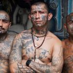 Contratan experto en El Salvador para asesorar sobre la MS-13 en Nueva York