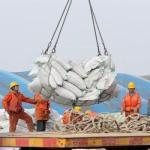 China aumenta su comercio exterior un 8,8 porciento hasta mayo y reduce su superávit