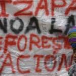 Las concesiones forestales de Guatemala: ante el reto de modernizarse