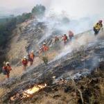 Bomberos avanzan contra fuego de California que ha quemado 34.800 hectáreas