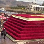 Ecuador logra récord Guinnness con pirámide ancestral de rosas