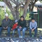 Padres responsables de los problemas de los hijos