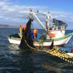 Desarrollo sostenible de pesca centrará cita parlamentaria regional en Panamá
