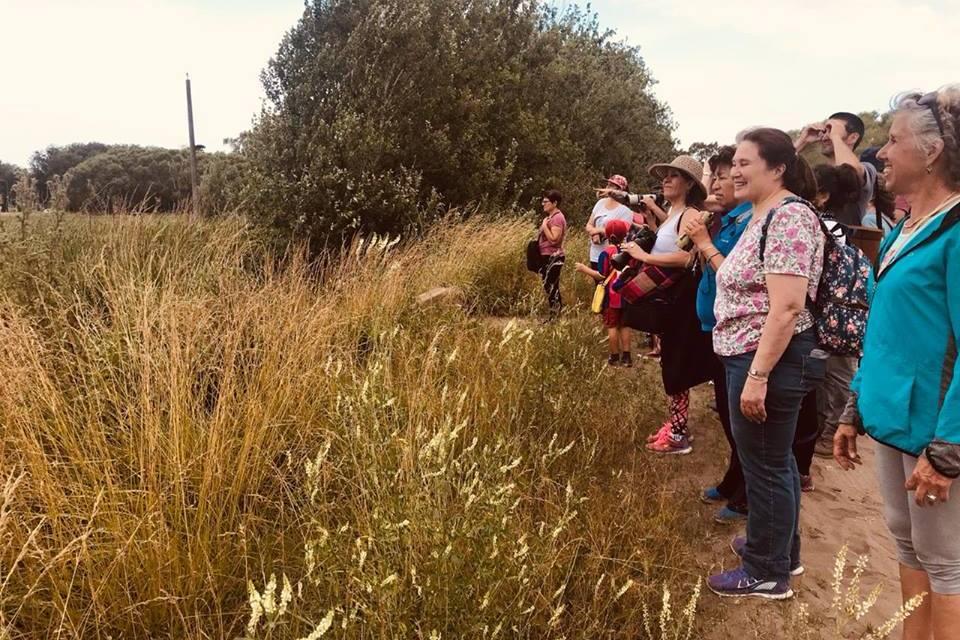 La salida de Avistaje de Naturaleza en Pavón (General Lavalle) convocó más de 40 personas