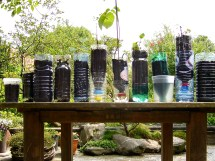 Recycled Container Vegetable Garden Ideas