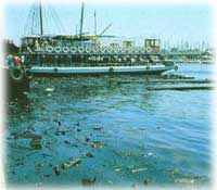 imagenes y fotografías de la contaminación (3/4)