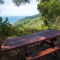 Picnic table on the Fence Loop trail.