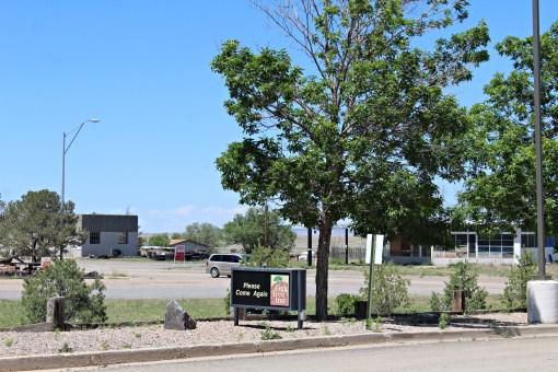Oak Tree In - Vaughn, NM (2b)