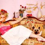Marie Antoinette Cakes dog corsett