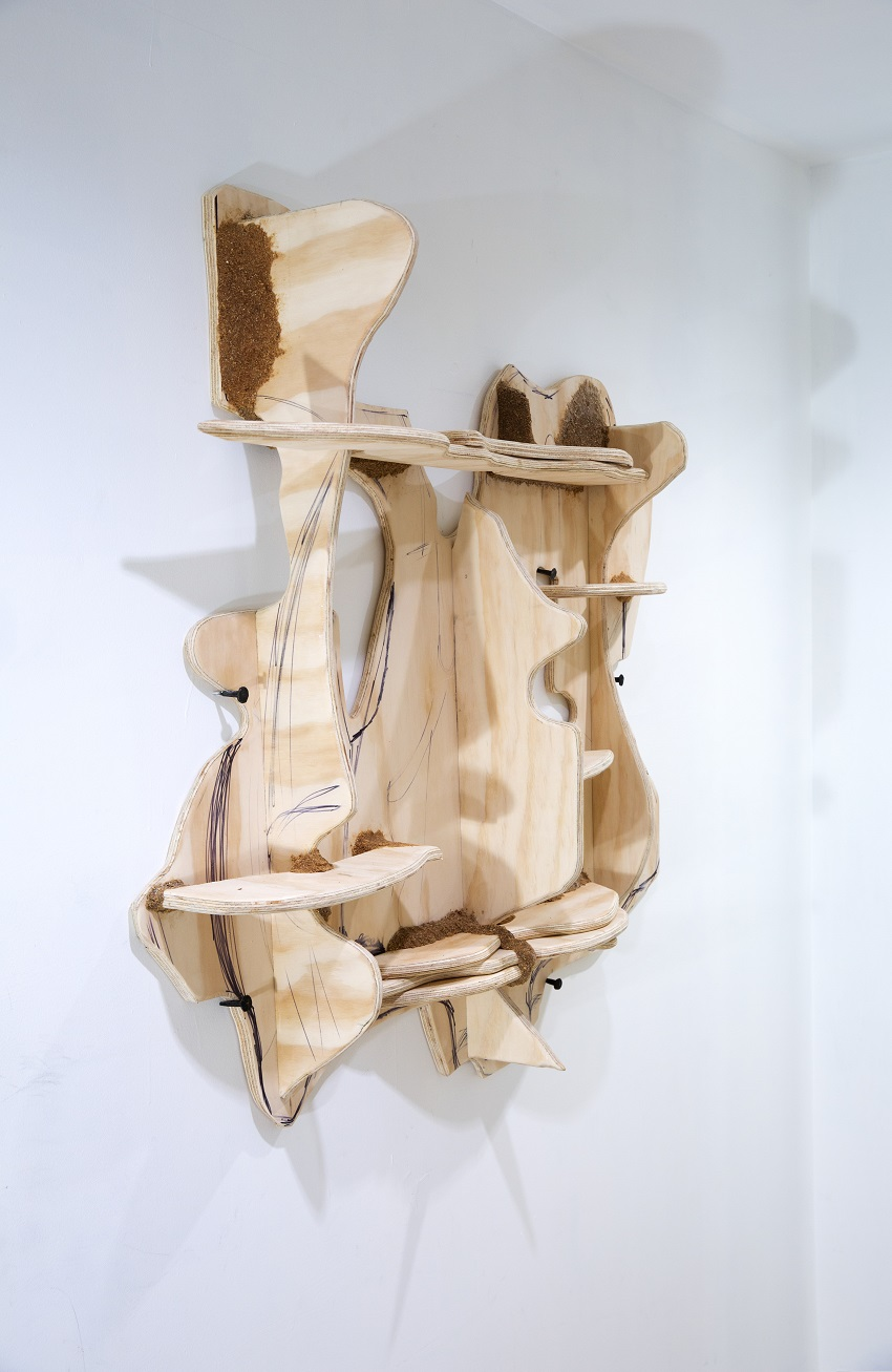 Jessi Reaves - Bunny Face (aliveness) shelf, 2016, plywood, sawdust, ink, hardware
