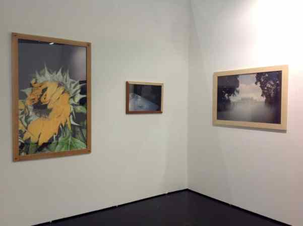 Czułość Gallery, booth F5, photo Contemporary Lynx