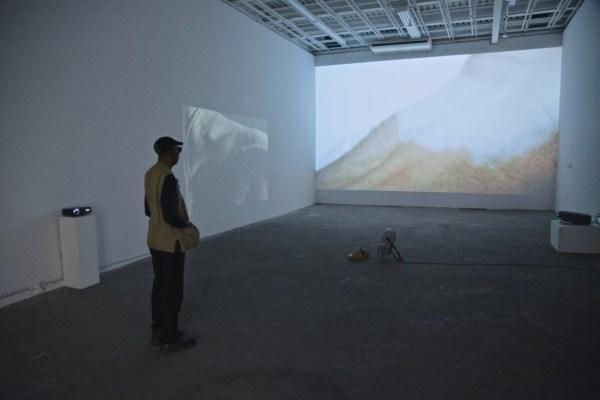 Piotr Skiba, Honky, WhiteBox Art Center, New York, exhibition view, courtesy of MAK Gallery, Photograph: Piotr Skiba.