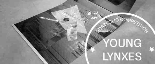 Ewa Doroszenko portfolio contemporary lynx