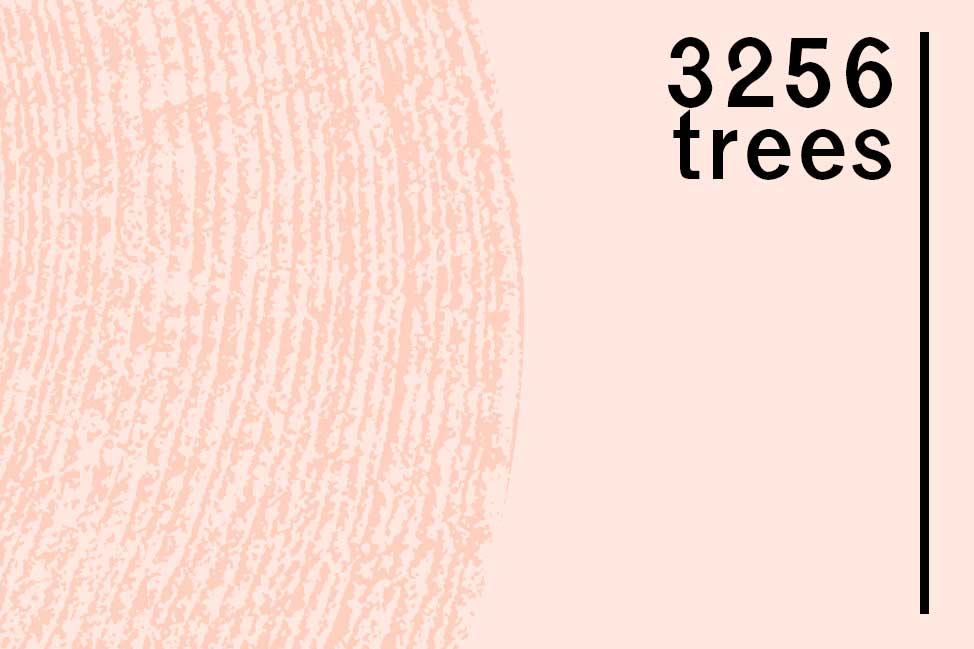 3256 drzew labirynt