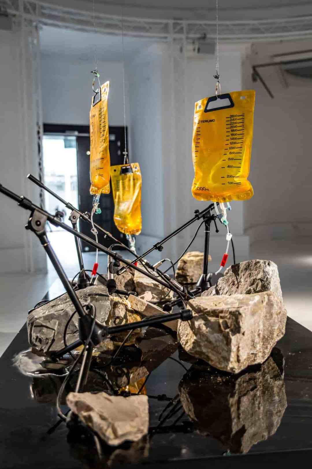 Wro Biennale 2019, Shun Owada, Unearth / Paleo Pacific, instalation.