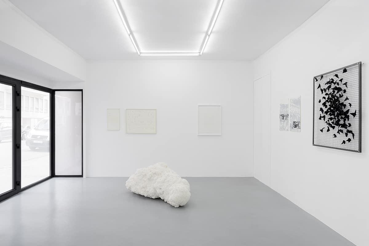 achrome exhibition