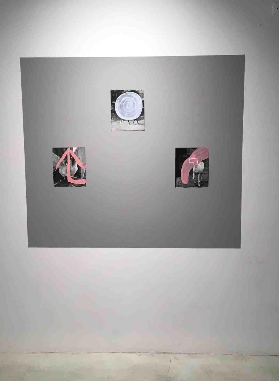 Luka Rayski, 11603: Una Exposición en una Maleta, exhibition view