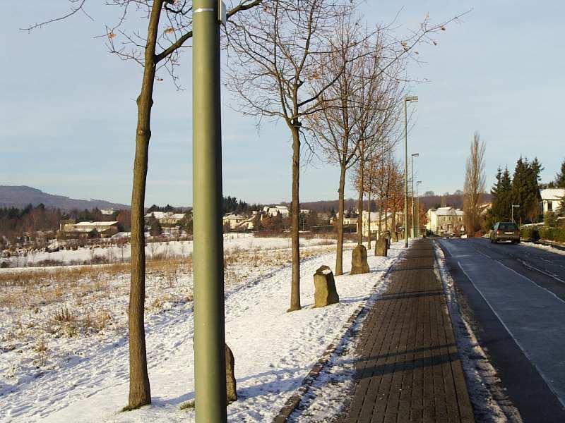 Kassel, Joseph Beuys, 7000 Eichen - Stadtverwaldung statt Stadtverwaltung