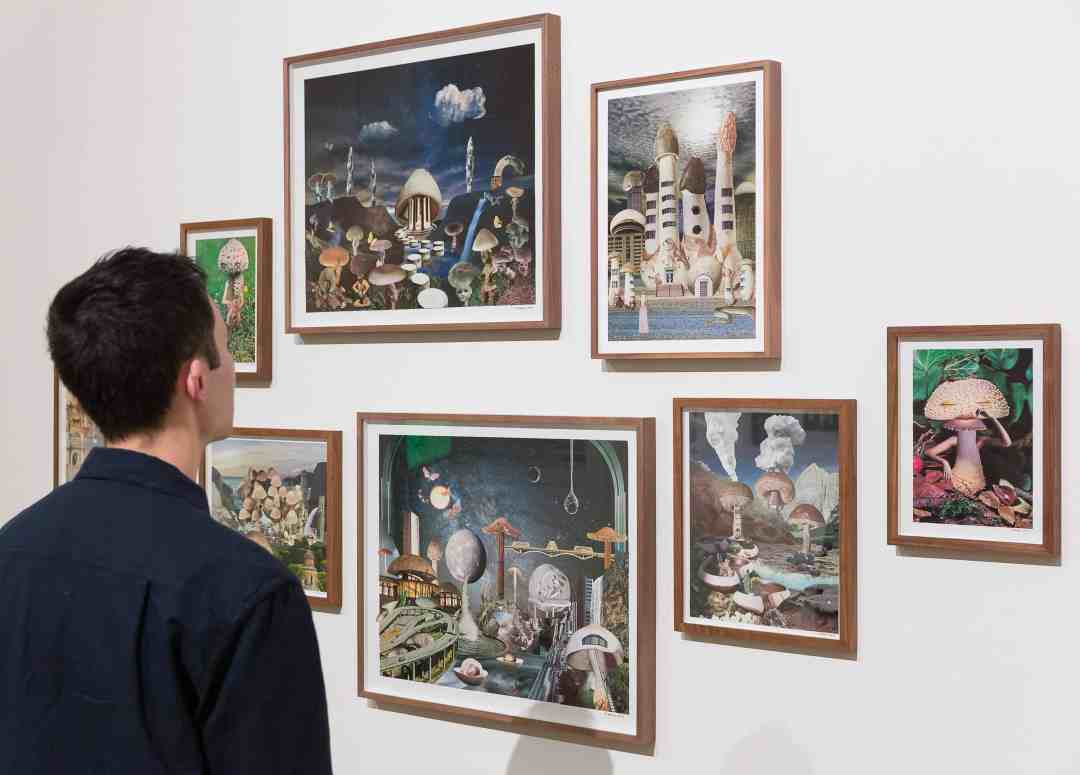 Seana Gavin collage works, as part of Mushrooms The Art, Design and Future of Fungi © Mark Blower