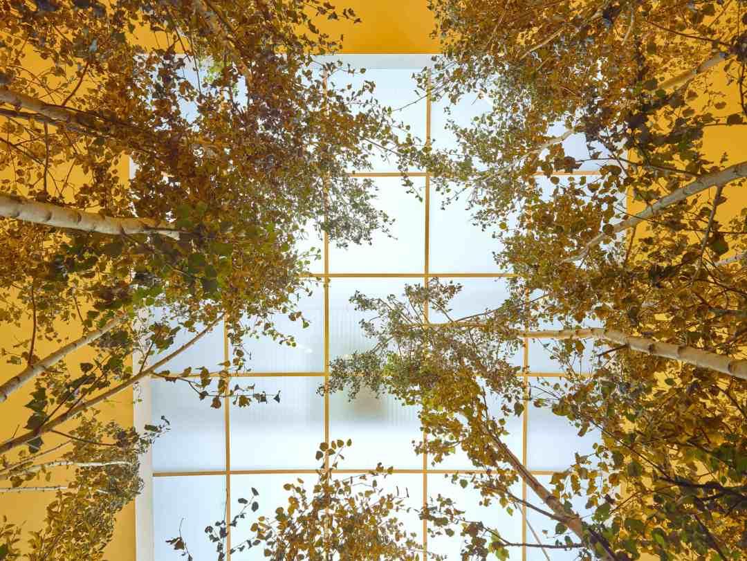 """Olafur Eliasson: Y/our future is now"" - exhibition, The Serralves Museum of Contemporary Art, © Filipe Braga"