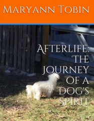 afterlife cover N copy