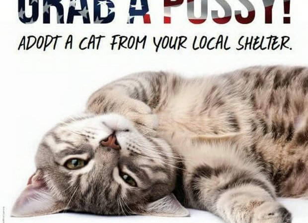 PETA Launched A 'Grab A Pussy' Campaign And Didn't See The Backlash Coming