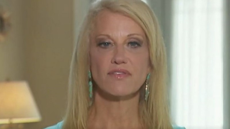 Asked About Trump Boosting Epstein Conspiracies, Kellyanne Conway Whines About Russia Investigation
